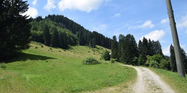 Wiesenweg zum Kappeler Höhenweg