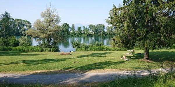 Liegewiese Alter Rhein