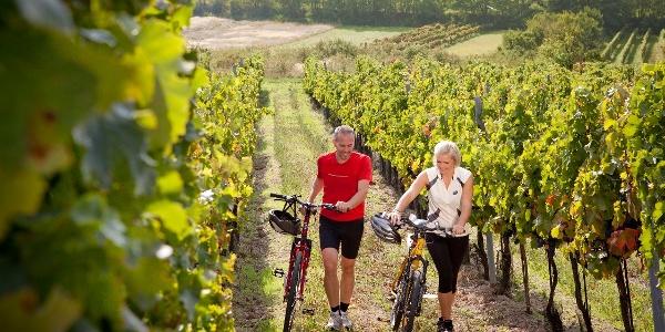 Ein Abstecher in den Weingarten