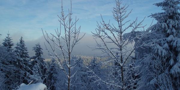 Bad Sachsa im Winter
