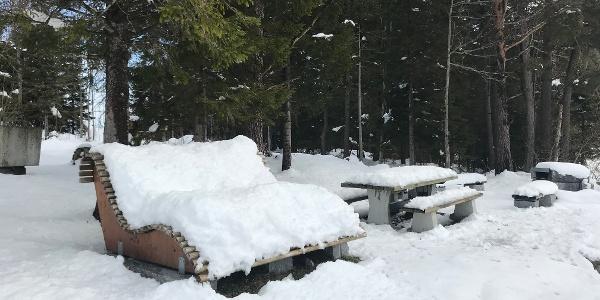 Holzlige am Ende des Winterwanderweges