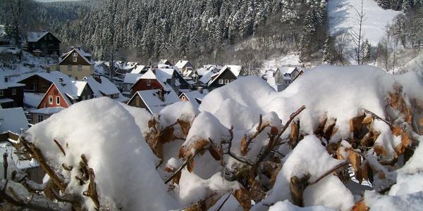 Wildemann im Winter Foto: Peter Weiss
