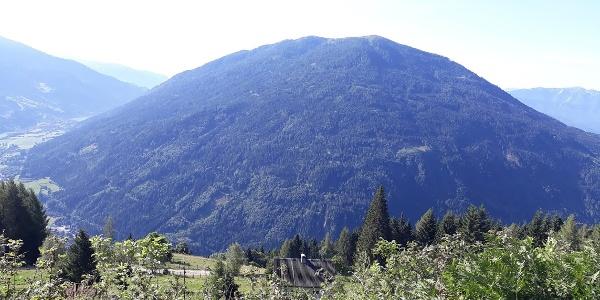 Waldreich. Der Mirnock von Norden