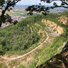 Steinbruch für Kletterer und Flieger Blick vom Ölberg