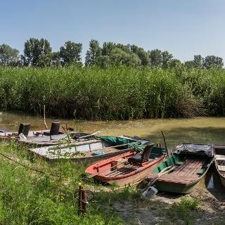 A Vajai-őstó csónakkikötője