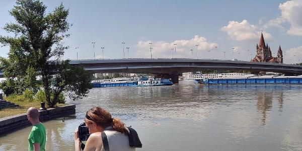 An der Donau mit Reichsbrücke und Mexikokirche