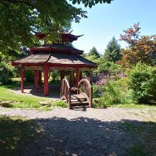 Asiatischer Garten in Lebach
