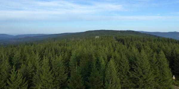 Blick von der Hanskühnenburg über den Höhenzug 'Auf dem Acker'