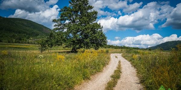 Road going through pitoresque landscape