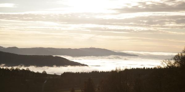 Nebelmeer im Schwarzwald