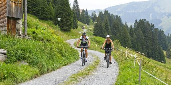 Mountainbiketouren in Damüls