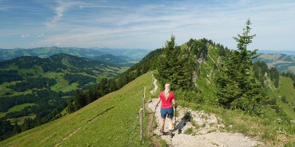 On the ridge trail between Hochgrat and Seelekopf