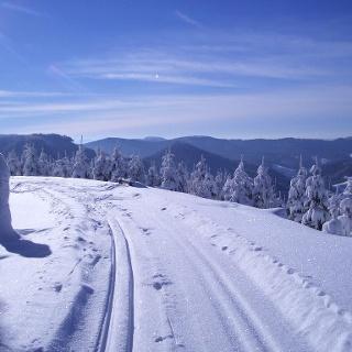Winterwandern in Bad Peterstal-Griesbach