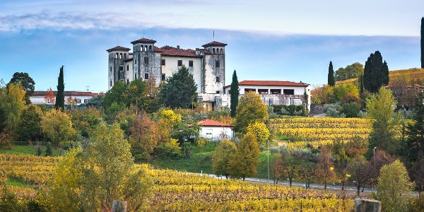 Dobrovo Castle and the surrounding vineyards