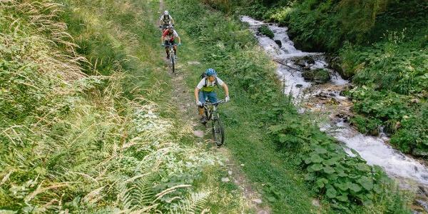 Bike-Trail-Bach