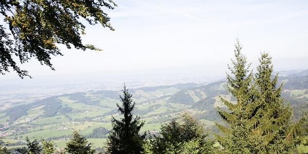 Ausblick Grüntalkogelhütte