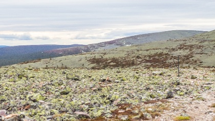 Fell Kesänkitunturi highlands view to Fells Lainiotunturi and Pallastunturit