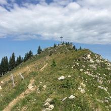 Die letzten Meter zum Gipfelkreuz
