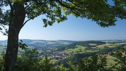 Remigiusberg - Blick von der Ruine Michelsburg