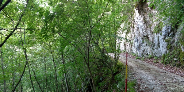 The trail is carved into the rock walls of the steep slopes of Mt. Kolovrat