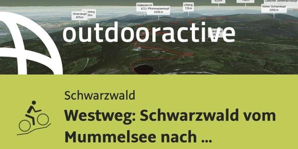 Mountainbike-tour im Schwarzwald: Westweg: Schwarzwald vom Mummelsee nach Pforzheim