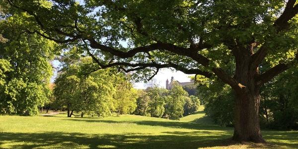 Coburger Hofgarten mit Blick auf die Veste Coburg
