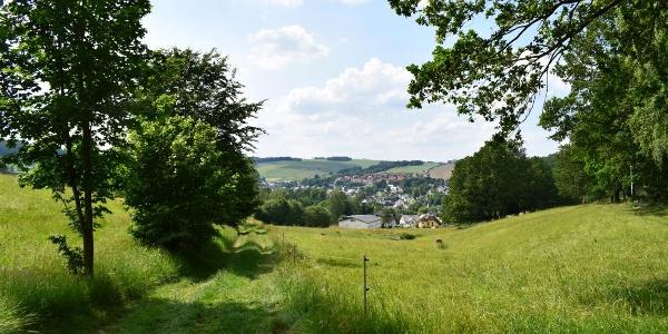 Blick auf Burkhardtsdorf
