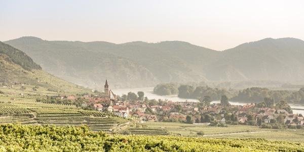 Welterbesteig bei Weißenkirchen in der Wachau