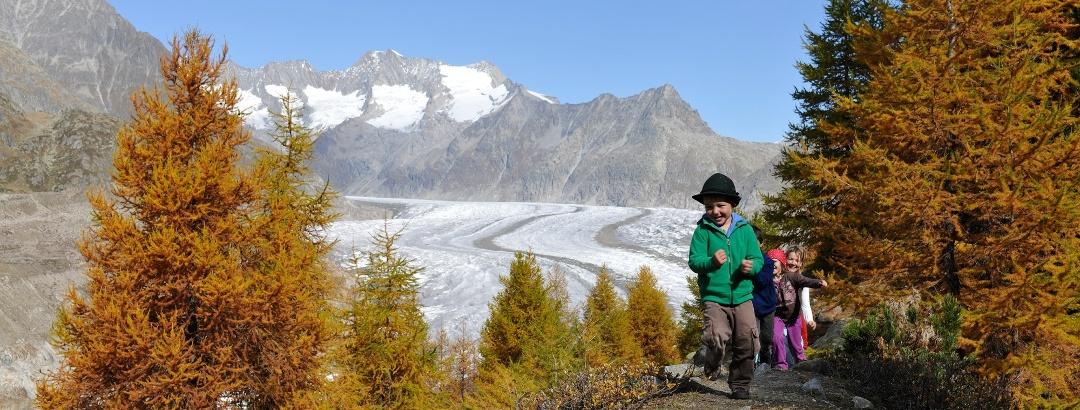 Wandern mit Kids im Aletschwald - märchenhaft schön