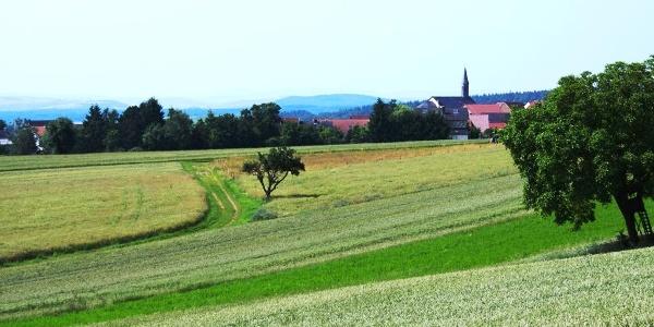Vitaltour Kuckucksweg  Bild 6