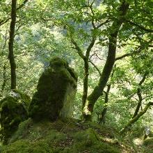 Abenteuerliche Felsformationen gilt es zu umwandern