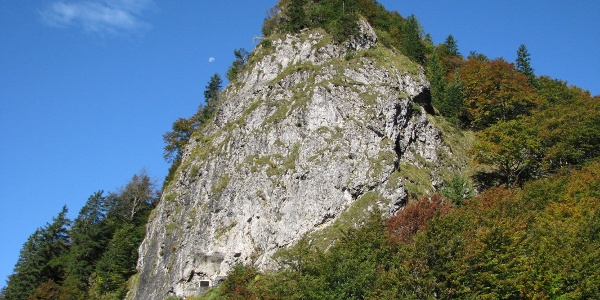 Vrh Bače