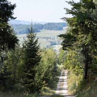 Wanderweg mit Ausblick