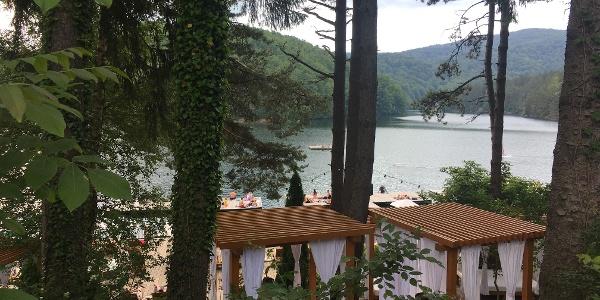 Lacul Gozna