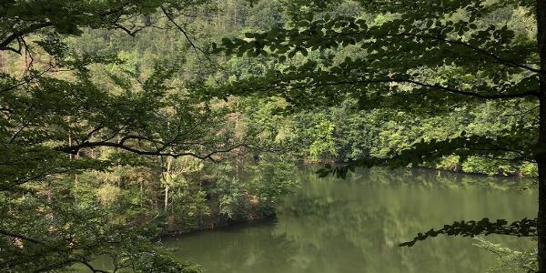 Lacul Breazova