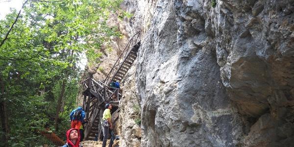 Holztreppe (ab ~920 m) zur Höhle