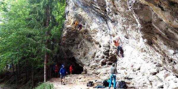 Klettergarten Adlitz ~890m