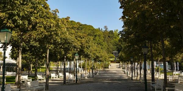A.Ausgangspunkt ist das Kurparktor am Kaiser Franz Ring mit Hauptallee und Mozarttempel