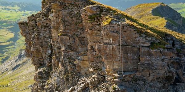 Leiter auf der Route über den Beverin Pintg