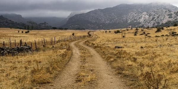 Winding Dirt Track