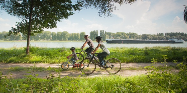Radfahren in der Südpfalz