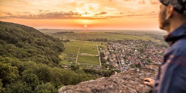 Aussicht Südliche Weinstrasse / Haardtrand