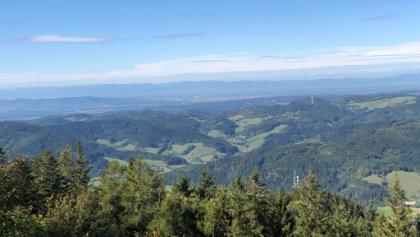 Blick vom Hörnleberg in die Rheinebene; im Hintergrund die Vogesen