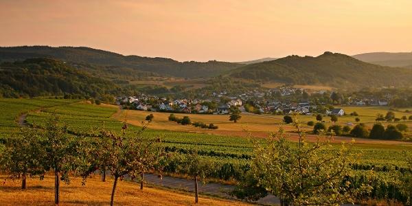 Goldene Herbsstimmung im Moselland