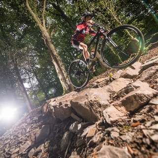 MTB Trail WaldMeister