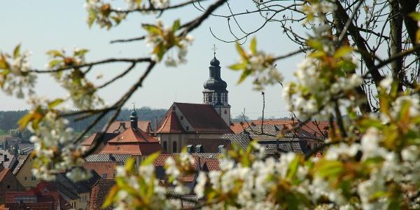Blick auf Gochsheim