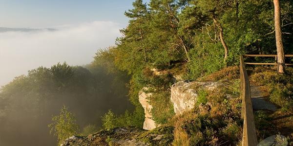 Blick in den Nebel des Sauertals