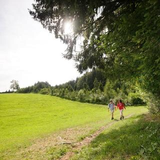 Wanderer auf dem Ringelschlagweg