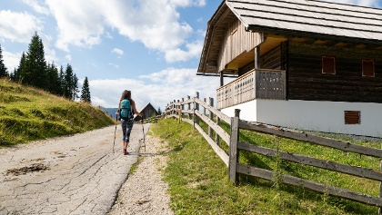 Auf dem Juliana Trail zwischen Bled und Goreljek