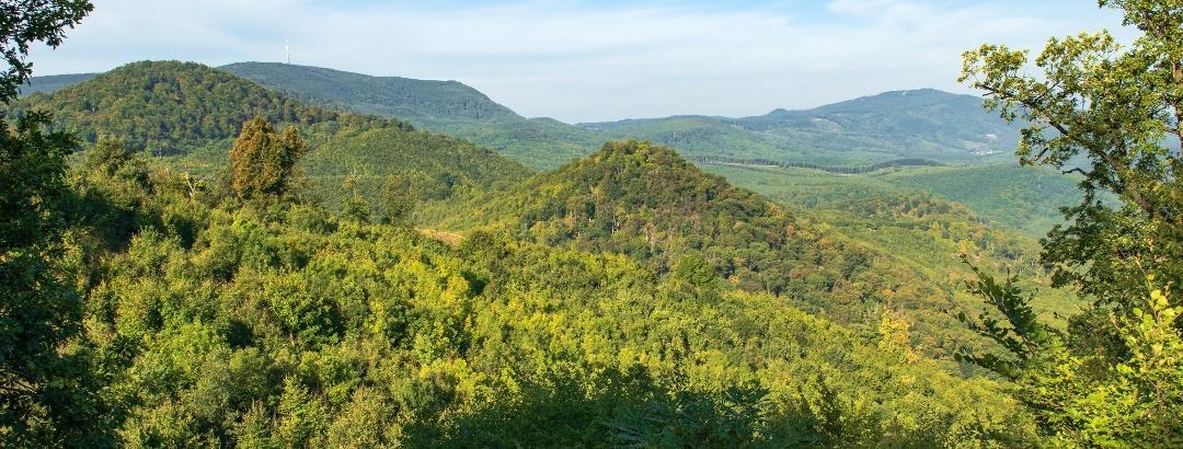 A Mátra vulkáni kúpoktól hullámos gerince a Jagusról